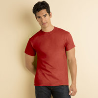 Heavy Cotton™ Adult T-shirt ( DEAL )